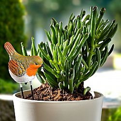 Magnet 3Pagen Strážca zalievania rastlín